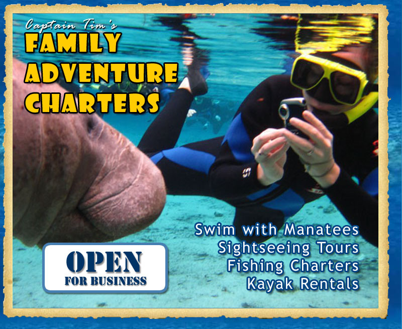 Swim with Manatees Tour